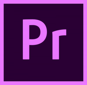 adobe premiere pro logo 41 300x293 - Adobe Premiere Pro Logo