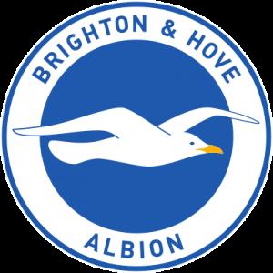 brighton hove albion logo 41 300x300 - Brighton & Hove Albion FC Logo