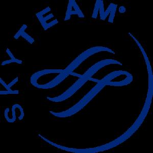 skyteam logo 51 300x300 - Skyteam Logo