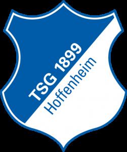 hoffenheim logo 41 251x300 - Hoffenheim Logo
