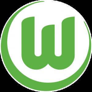 vfl wolfsburg logo 41 300x300 - Wolfsburg Logo
