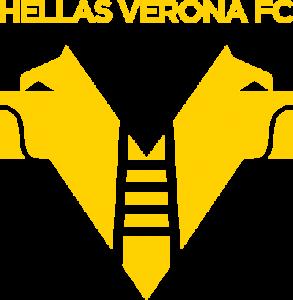 hellas verona fc logo 41 293x300 - Hellas Verona FC Logo